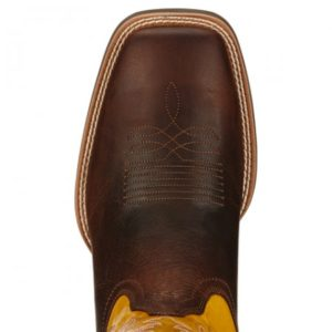 ariat10017393toe